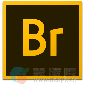 Adobe Bridge 2020 10.1.1